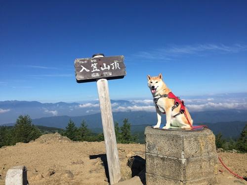 入笠山登山①(沢入登山口→山頂)