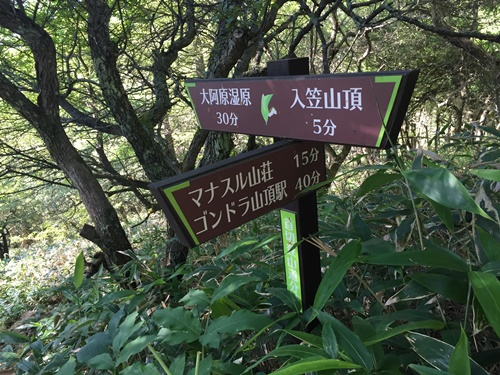 山頂から大河原湿原へ2
