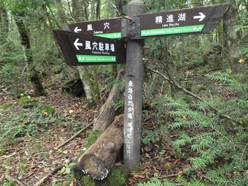 樹海31東海自然歩道