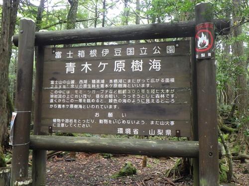 樹海34東海自然歩道