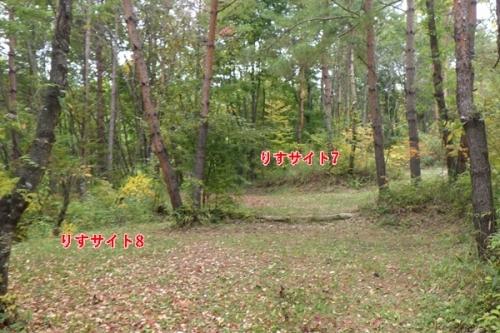 あさまの森キャンプ場7