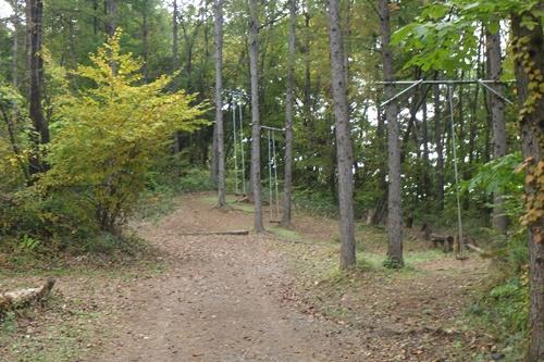 あさまの森キャンプ場27