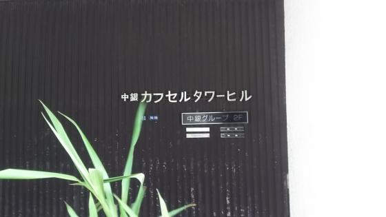 01DSC_0063.jpg