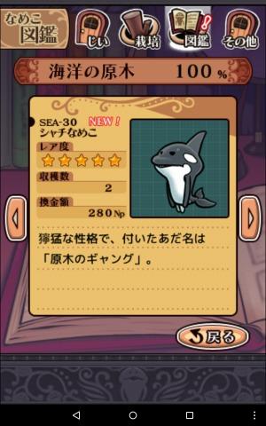 2016海洋の原木SEA-30