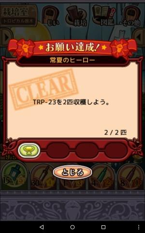 2016トロピカル原木009