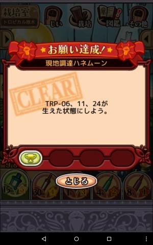 2016トロピカル原木018
