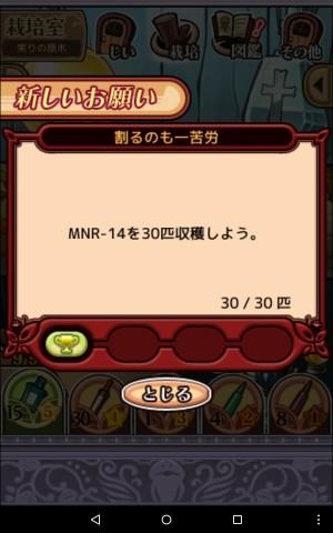 2016実りの原木065