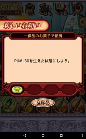 2016パンプキン原木_027