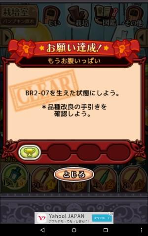 2016パンプキン原木_051