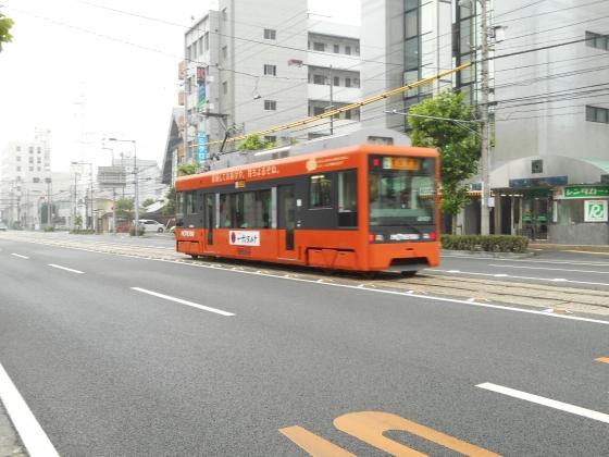 DSCN2595.jpg