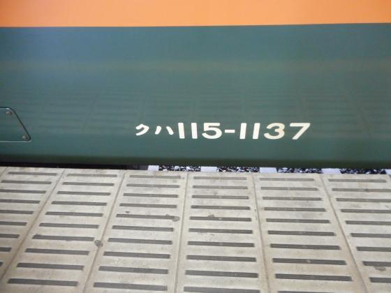 DSCN4674.jpg