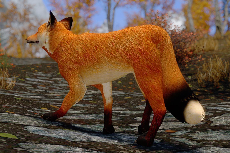 CuteFoxiesSK 011-1 Info Fox Mod 1
