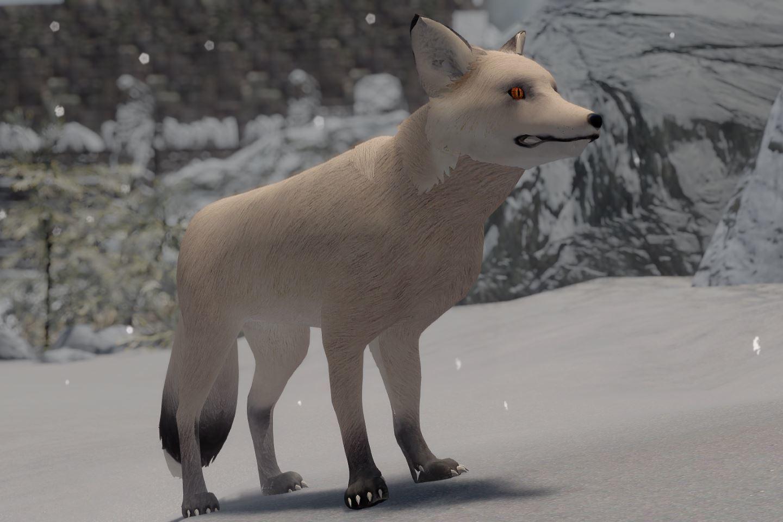 CuteFoxiesSK 033-1 Info SnowFox Mod 1