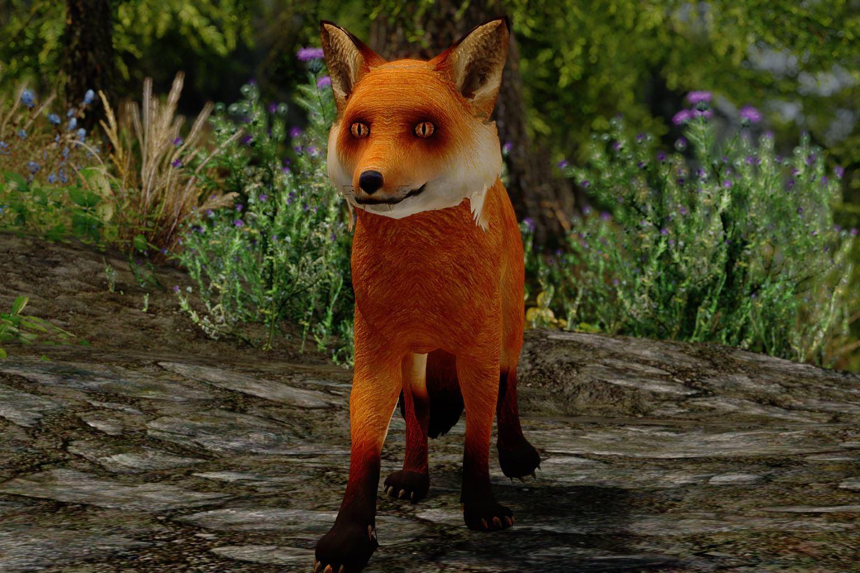 CuteFoxiesSK 111-1 Info Fox Mod 1