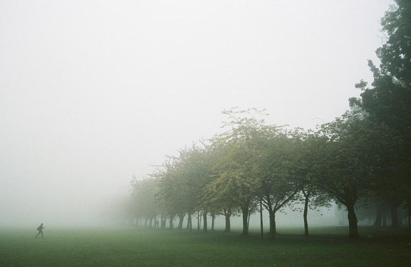 フリー画像霧に包まれた景色