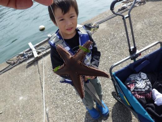 三浦港釣り (23)