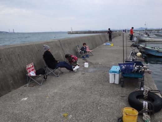 三浦港釣り (32)