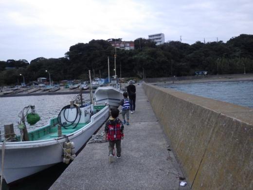 三浦港釣り (33)