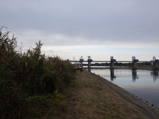 秋ヶ瀬で釣 (30)