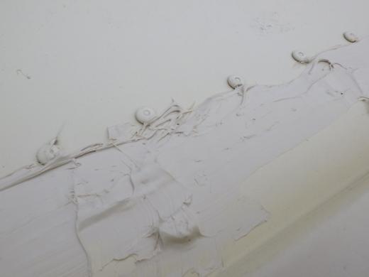 雨漏り修復 (22)