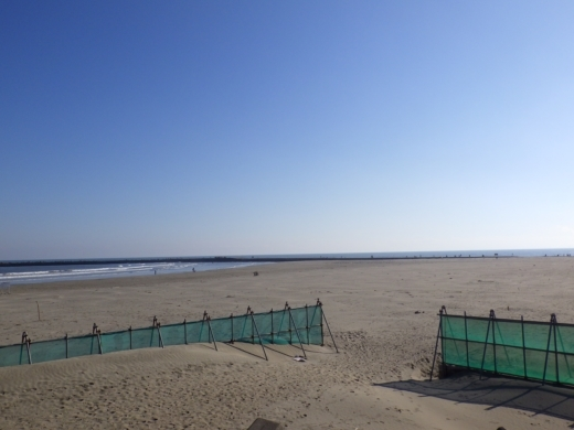 片貝漁港 (9)