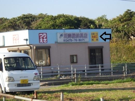 片貝漁港 (26)
