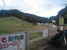 NCM_4348.jpg