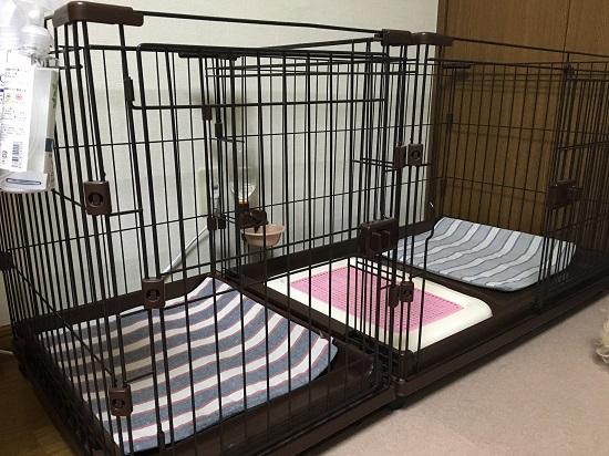 ベッドが秋バージョン 1