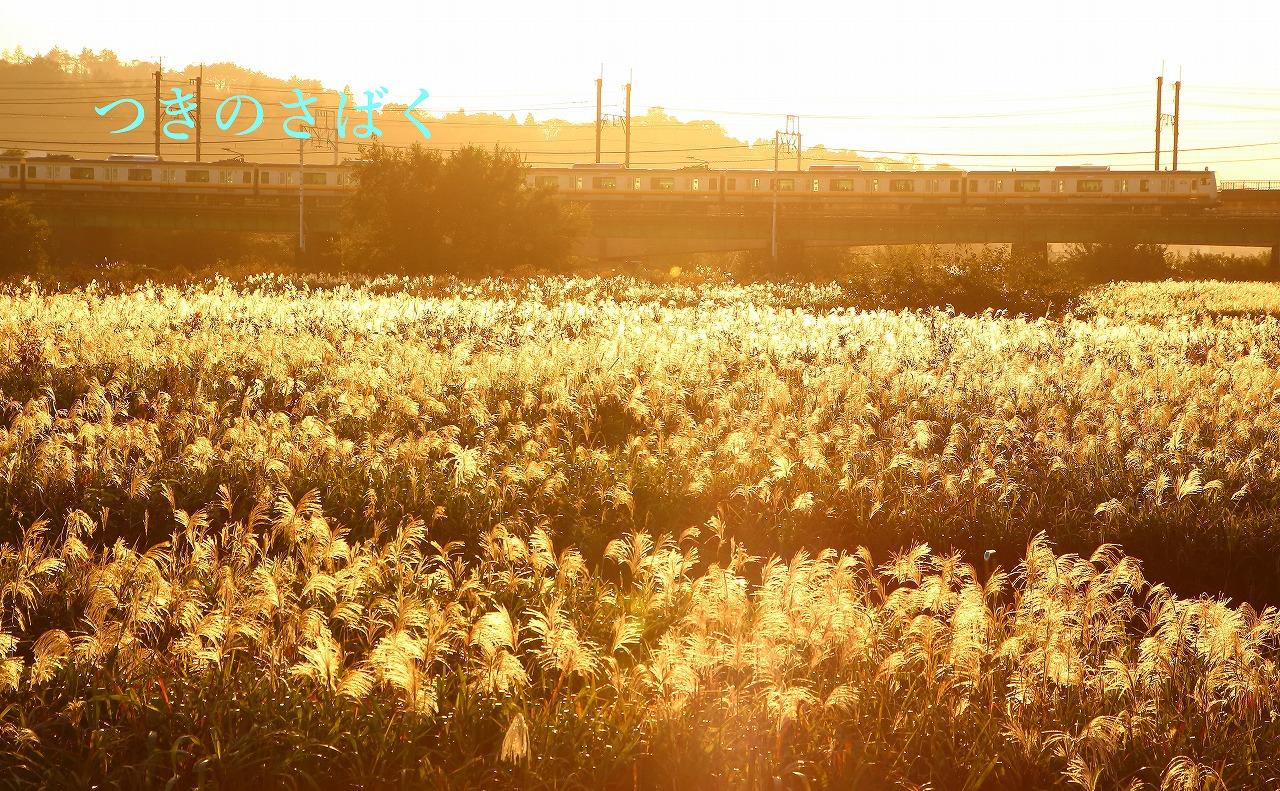 IMG_0898kontorasuto_1.jpg