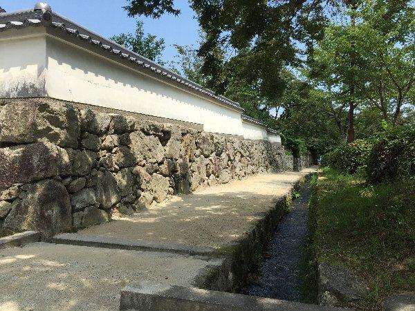 sakamoto-sandou017.jpg