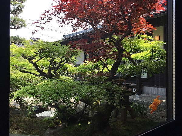 tanigawa-echizenshi-009.jpg